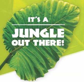 Navigate the Jungle: Free Health Care Seminar